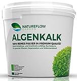Algenkalk Pulver 100 % rein für Buchsbäume