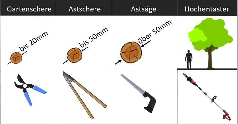 Richtwerte für Gartenscheren: Welche Schere für welche Astdicke?