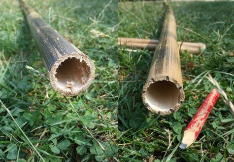 Schritt 2, Fackel selber bauen, Gartenfackel, Bambusfackel