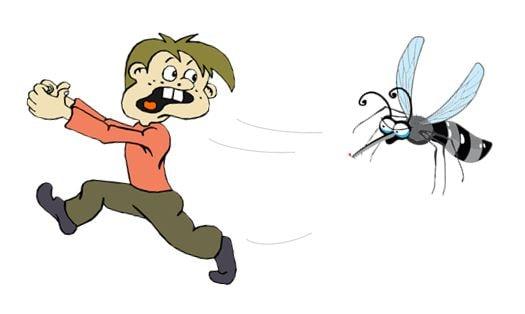 Mückenspray