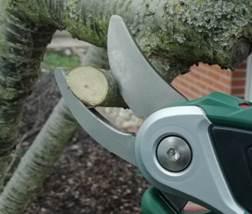 Bosch elektrische Gartenschere